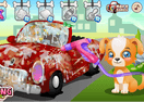 Puppy Car Wash